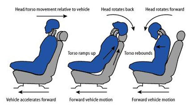ergonomic-tips-for-driving (2)