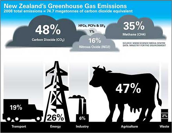 برخلاف تصورمان، فقط ۱۹٪ از حجم گازهای گلخانهای مربوط به سیستم حمل و نقل و ۴۷٪ سهم دام است!